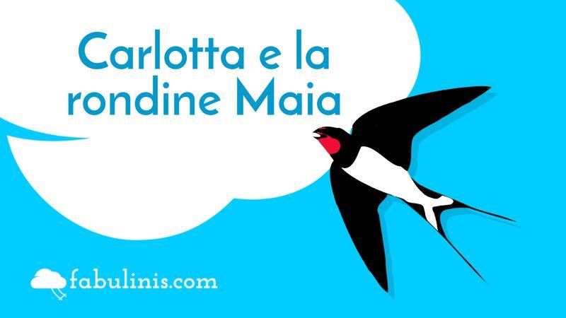 Carlotta e la rondine Maia 👧